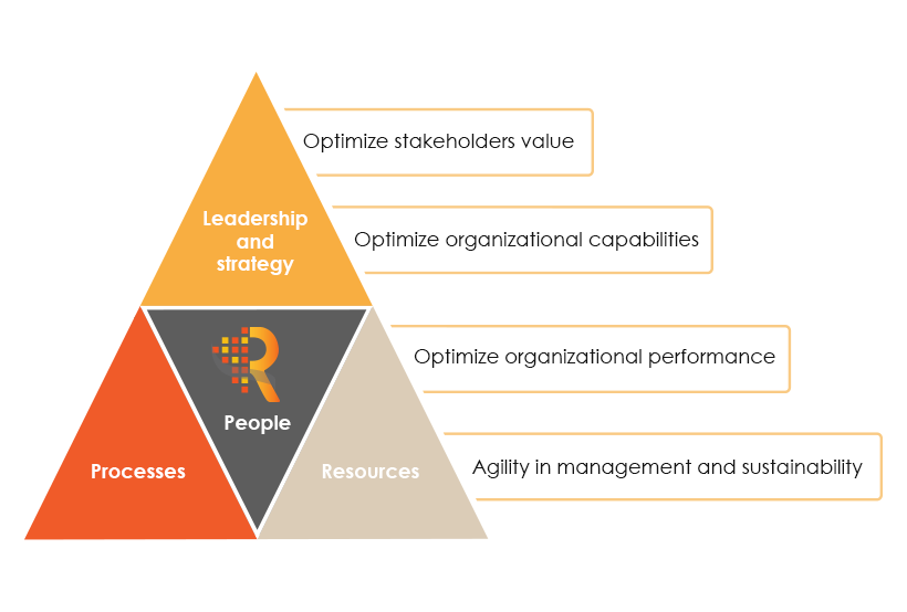 how to achieve organizational excellence